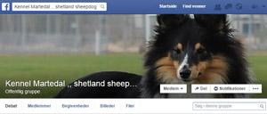 facebook_kennelmartedal.dk